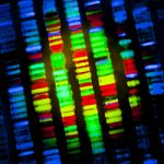 my foray into genetic testing