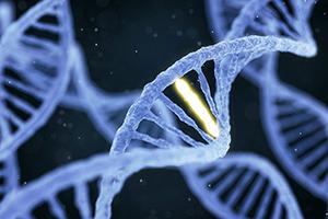 Leyla Weighs In: Nutritional Genomics: Nutrition Prescriptions Based on Genetics