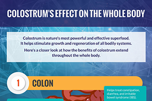 What Are Colostrum's Effects on the Whole Body?