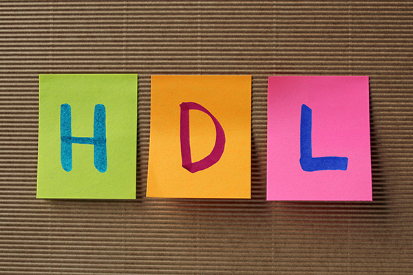 How do I raise my HDL?
