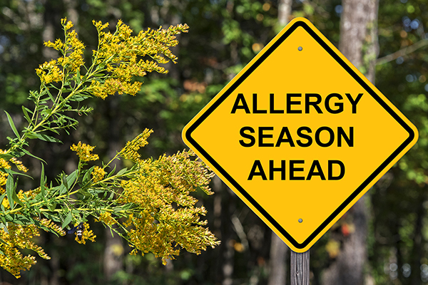 10 tips for surviving allergy season