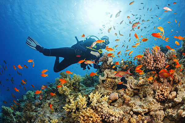 Scuba diving is great (but there's a lot that can go wrong!)