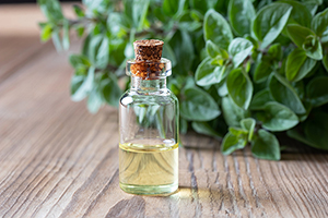 Keep Wild Oil of Oregano on Hand This Holiday Season