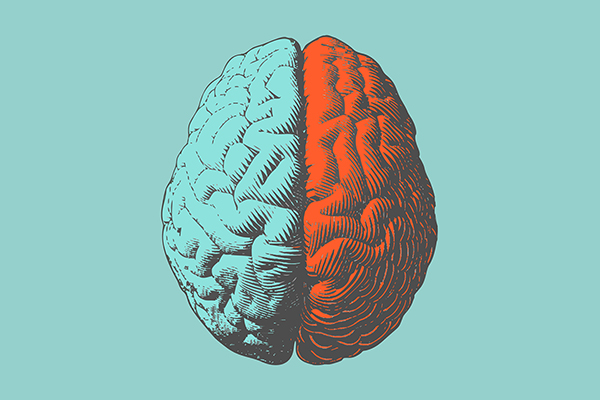 Pregnenolone for brain and pain